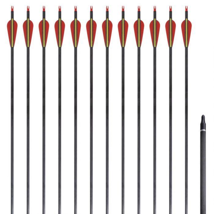 Стандартни стрели за лък 0,76 см карбонови 12 бр.